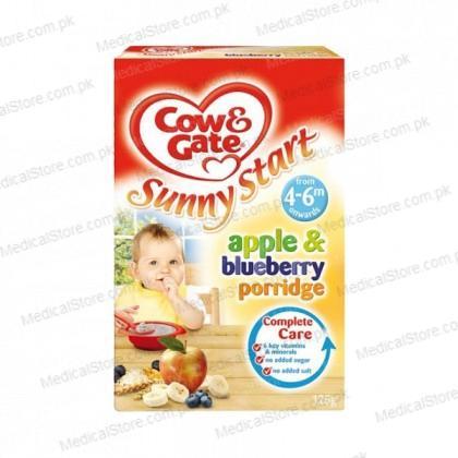 Apple & Blueberry Porridge (125g)