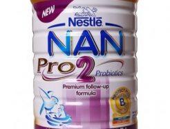 Nestle Nan 2 (400Gms)
